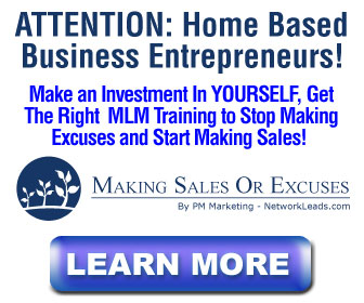Making Sales or Excuses MLM Training by PM Marketing