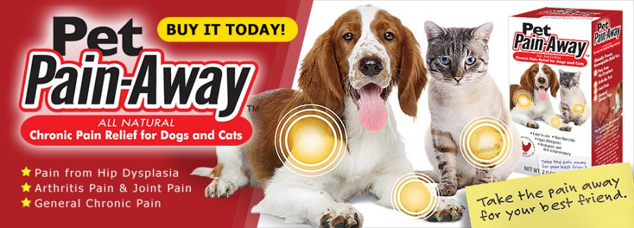 Naturopathic pain meds for dogs